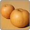 自然栽培 梨