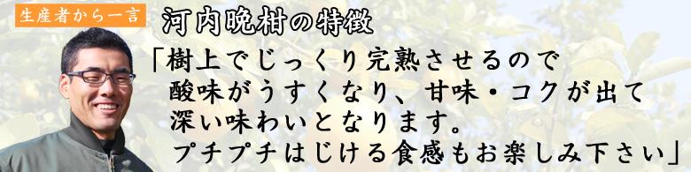 自然栽培河内晩柑(完熟和製グレープフルーツ)