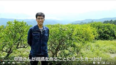 中垣貴瑛が自然栽培柑橘を作ることになったきっかけ