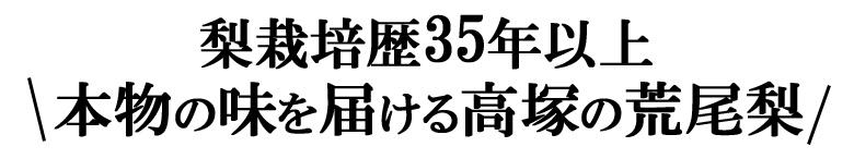 高塚の荒尾梨