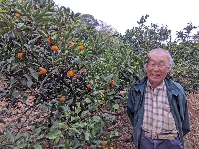 自然栽培柑橘農家森