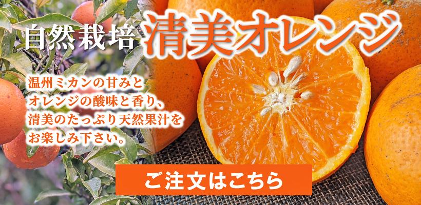 自然栽培清美オレンジご注文はこちら