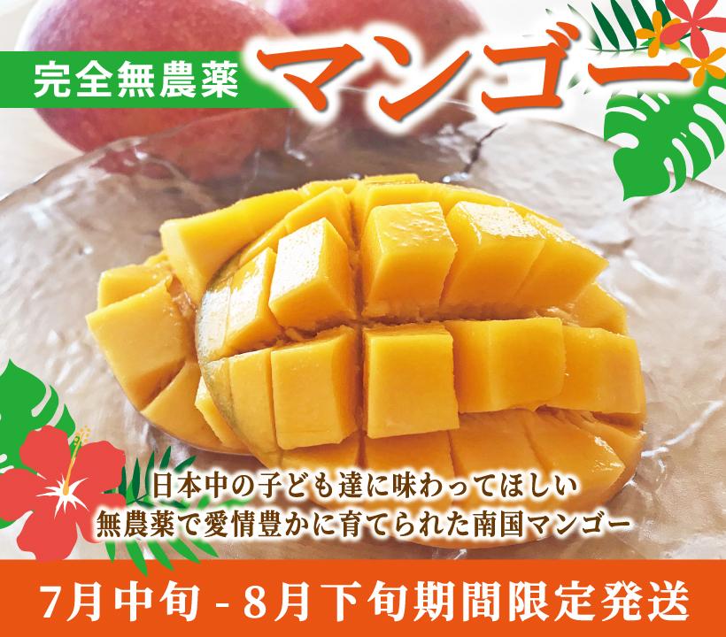 沖縄産完全無農薬マンゴー