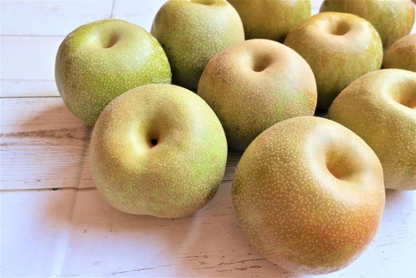 荒尾梨の品種はいくつあるのか