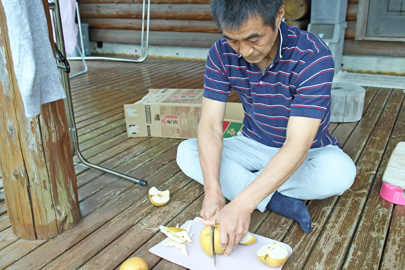 成生梨の試食